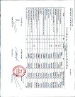 Báo cáo KQKD hợp nhất quý 1 năm 2013 - Công ty Cổ phần Viettronics Tân Bình