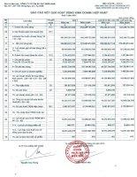 Báo cáo KQKD hợp nhất quý 1 năm 2013 - Công ty Cổ phần Pin Ắc quy Miền Nam