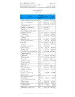 Báo cáo tài chính năm 2008 (đã kiểm toán) - Công ty Cổ phần Pin Ắc quy Miền Nam
