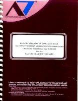 Báo cáo tài chính năm 2013 (đã kiểm toán) - Công ty Cổ phần Khoáng sản và Đầu tư VISACO