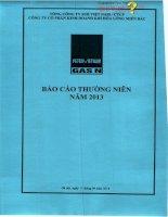 Báo cáo thường niên năm 2013 - Công ty Cổ phần Kinh doanh Khí hóa lỏng Miền Bắc