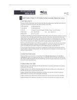 Báo cáo thường niên năm 2012 - Công ty Cổ phần Chứng khoán Toàn Cầu