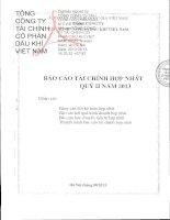 Báo cáo tài chính hợp nhất quý 2 năm 2013 - Tổng Công ty Tài chính Cổ phần Dầu khí Việt Nam