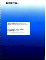 Báo cáo tài chính công ty mẹ quý 2 năm 2011 (đã soát xét) - Tổng Công ty Hóa dầu Petrolimex-CTCP