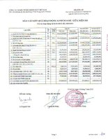 Báo cáo KQKD quý 2 năm 2011 - Công ty cổ phần Đầu tư Bất động sản Việt Nam