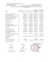 Báo cáo KQKD hợp nhất quý 3 năm 2011 - Công ty Cổ phần Tập đoàn Đại Dương