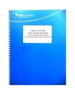 Báo cáo tài chính năm 2013 (đã kiểm toán) - Công ty Cổ phần Thủy hải sản Việt Nhật