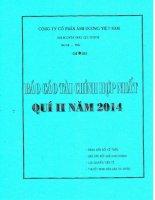 Báo cáo tài chính hợp nhất quý 2 năm 2014 - Công ty Cổ phần Ánh Dương Việt Nam