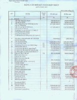 Báo cáo tài chính hợp nhất quý 4 năm 2010 - Ngân hàng Thương mại cổ phần Quốc Dân