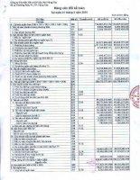 Báo cáo tài chính quý 1 năm 2010 - Công ty Cổ phần Thương mại và Dịch vụ Dầu khí Vũng Tàu