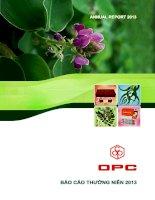 Báo cáo thường niên năm 2013 - Công ty cổ phần Dược phẩm OPC