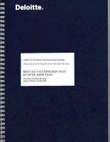 Báo cáo tài chính hợp nhất năm 2010 (đã kiểm toán) - Công ty Cổ phần Tập đoàn Đại Dương