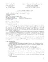 Báo cáo thường niên năm 2010 - Công ty Cổ phần Thiết bị Bưu điện