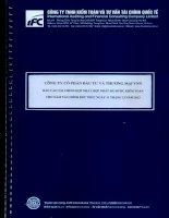 Báo cáo tài chính hợp nhất năm 2013 (đã kiểm toán) - Công ty cổ phần Đầu tư và Thương mại VNN