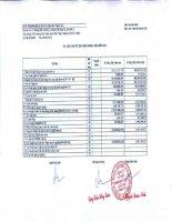 Báo cáo tài chính quý 4 năm 2010 - Công ty Cổ phần Thương mại và Dịch vụ Dầu khí Vũng Tàu