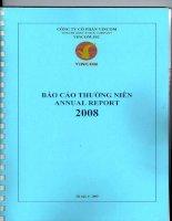 Báo cáo thường niên năm 2008 - Tập đoàn Vingroup - Công ty Cổ phần