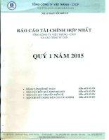 Báo cáo tài chính hợp nhất quý 1 năm 2015 - Tổng Công ty Việt Thắng - CTCP