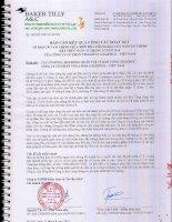 Báo cáo tài chính quý 2 năm 2015 (đã soát xét) - CTCP Vinalines Logistics - Việt Nam