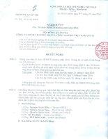 Nghị quyết Hội đồng Quản trị - Công ty Cổ phần Chứng khoán Thương mại và Công nghiệp Việt Nam