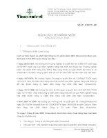 Báo cáo thường niên năm 2008 - Công ty Cổ phần Tập đoàn Vinacontrol