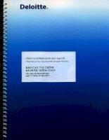 Báo cáo tài chính năm 2011 (đã kiểm toán) - Công ty cổ phần Xuân Mai - Đạo Tú