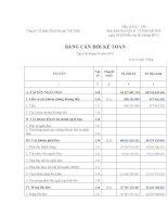 Báo cáo tài chính quý 2 năm 2010 - Công ty Cổ phần Thủy hải sản Việt Nhật
