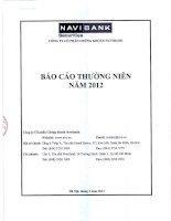 Báo cáo thường niên năm 2012 - Công ty cổ phần Chứng khoán NAVIBANK
