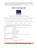 Bản cáo bạch - Công ty Cổ phần Hồng Hà Việt Nam