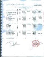 Báo cáo KQKD quý 2 năm 2010 - Công ty Cổ phần Bất động sản Du lịch Ninh Vân Bay
