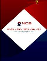 Báo cáo thường niên năm 2013 - Ngân hàng Thương mại cổ phần Quốc Dân