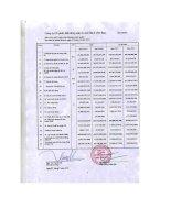 Báo cáo KQKD hợp nhất quý 4 năm 2011 - Công ty Cổ phần Bất động sản Du lịch Ninh Vân Bay