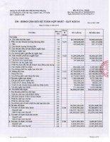 Báo cáo tài chính hợp nhất quý 4 năm 2014 - Công ty Cổ phần Sản xuất Thương mại Dịch vụ Phú Phong