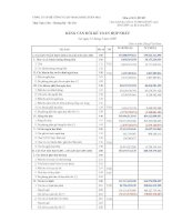 Báo cáo tài chính quý 1 năm 2009 - Công ty cổ phần Bê tông và Xây dựng Vinaconex Xuân Mai
