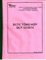 Báo cáo tài chính quý 2 năm 2014 - Công ty Cổ phần Đầu tư Phát triển Thương mại Viễn Đông
