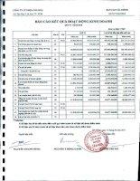 Báo cáo tài chính quý 4 năm 2010 - Công ty Cổ phần Nhựa Tân Hóa