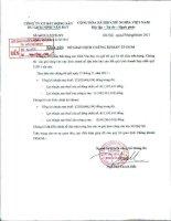 Báo cáo tài chính hợp nhất quý 3 năm 2011 - Công ty Cổ phần Bất động sản Du lịch Ninh Vân Bay