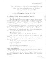 Báo cáo thường niên năm 2011 - Công ty Cổ phần Đầu tư Hạ tầng và Đô thị Dầu khí PVC