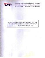Báo cáo tài chính năm 2008 (đã kiểm toán) - Công ty cổ phần Đầu tư Bất động sản Việt Nam