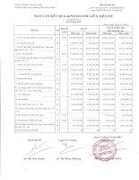 Báo cáo KQKD quý 2 năm 2013 - Công ty Cổ phần Vạn Phát Hưng