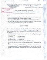 Nghị quyết Hội đồng Quản trị ngày 23-12-2010 - Công ty Cổ phần Đầu tư và Phát triển Dự án Hạ tầng Thái Bình Dương