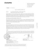 Báo cáo tài chính năm 2012 (đã kiểm toán) - Ngân hàng Thương mại cổ phần Phương Đông