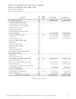 Báo cáo tài chính hợp nhất năm 2007 (đã kiểm toán) - Công ty cổ phần Vinafreight