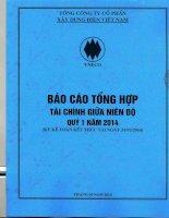 Báo cáo tài chính công ty mẹ quý 1 năm 2014 - Tổng công ty Cổ phần Xây dựng điện Việt Nam