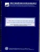 Báo cáo tài chính công ty mẹ quý 2 năm 2013 (đã soát xét) - Tổng công ty Cổ phần Xây dựng điện Việt Nam