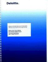 Báo cáo tài chính công ty mẹ năm 2011 (đã kiểm toán) - Tổng Công ty Hóa dầu Petrolimex-CTCP