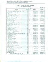 Báo cáo tài chính hợp nhất quý 1 năm 2011 - Công ty Cổ phần Đầu tư và Xây dựng Cấp thoát nước