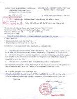 Báo cáo KQKD công ty mẹ quý 2 năm 2013 - Công ty Cổ phần Ánh Dương Việt Nam