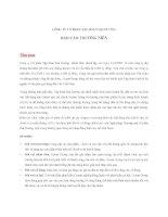 Báo cáo thường niên năm 2011 - Công ty Cổ phần Tập đoàn Đại Dương