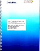 Báo cáo tài chính hợp nhất năm 2012 (đã kiểm toán) - Công ty cổ phần Bê tông và Xây dựng Vinaconex Xuân Mai