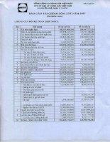 Báo cáo tài chính hợp nhất năm 2007 (đã kiểm toán) - Công ty cổ phần Đại lý Hàng hải Việt Nam